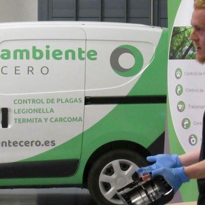 control plagas otoño en Zaragoza