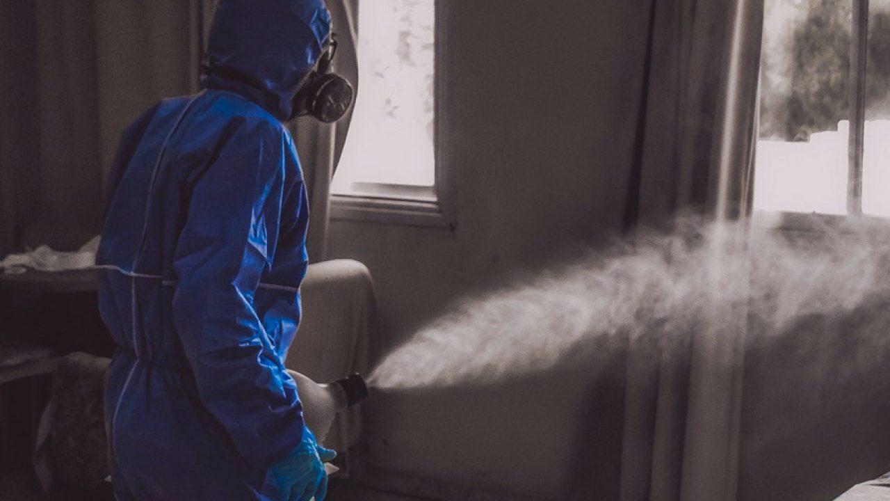 desinfectar viviendas Zaragoza