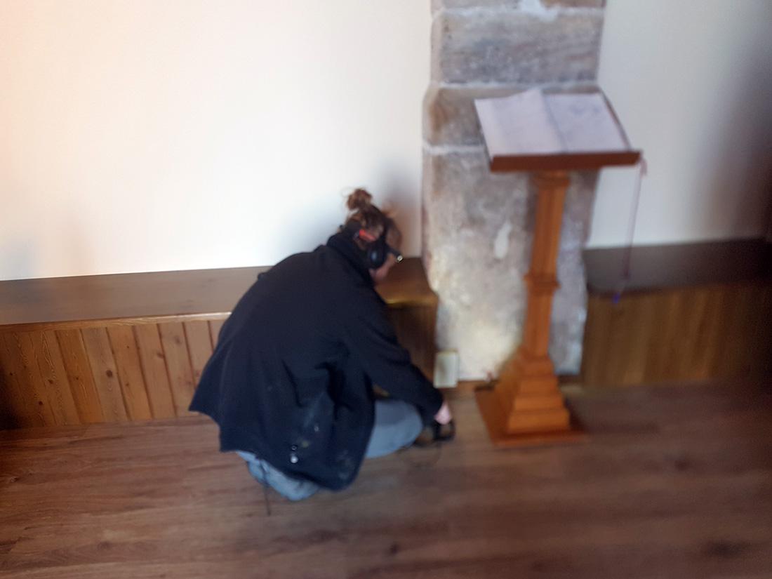 inspección termitas iglesias zaragoza