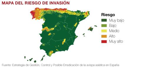 mapa España localización avispas asiáticas