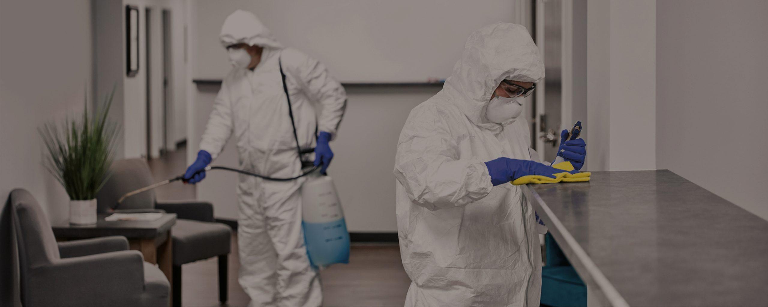 servicios desinfecciones coronavirus Zaragoza