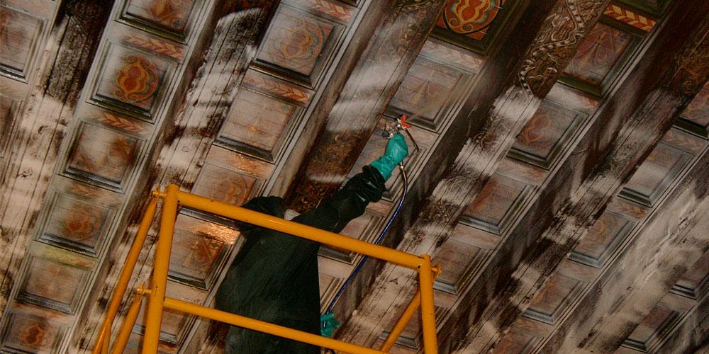tratamientos para evitar xilófagos en madera Zaragoza